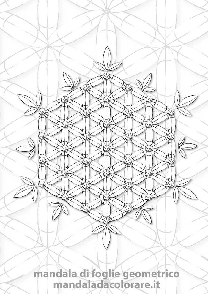 esempio di mandala di foglie geometrico