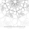 mandala da colorare bali frangipane